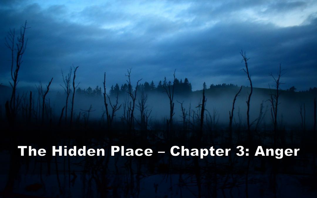 The Hidden Place - Chapter 3: Anger