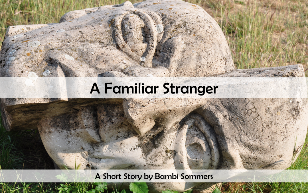 A Familiar Stranger — by Bambi Sommers