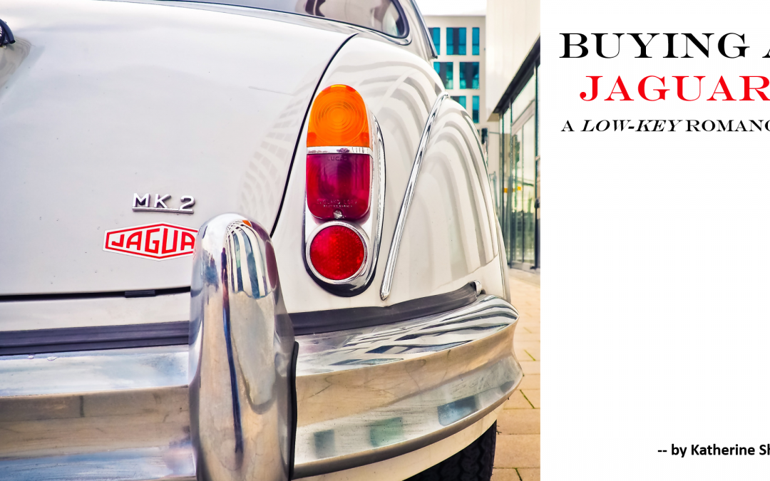 Buying a Jaguar: A Low-Key Romance — by Katherine Shaw